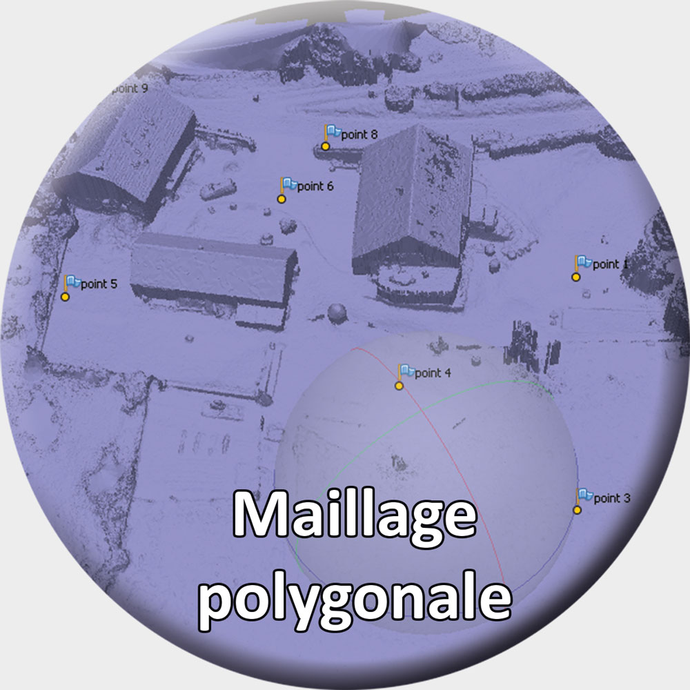 Maillage_polygonale